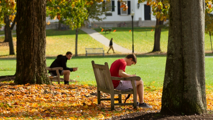 Students study on the Dartmouth Green.